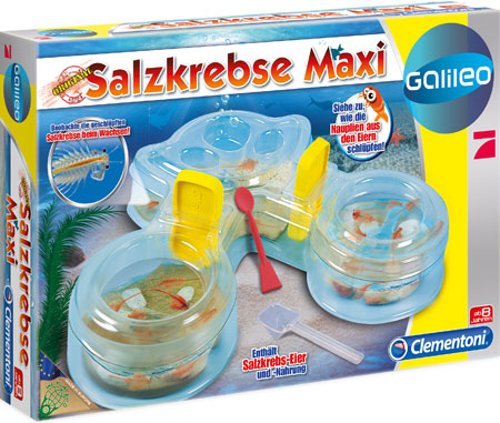 Galileo - Salzkrebse Maxi