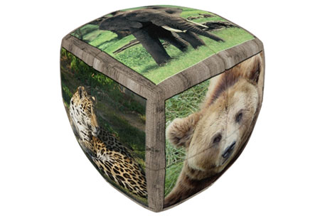 V-Cube 2 Essential 2x2 - Wildtiere