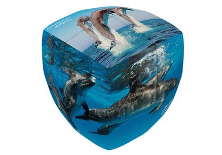 V-Cube 2 Essential 2x2 - Delfine