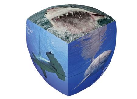 V-Cube 2 Essential 2x2 - Haie