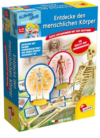 Entdecke den menschlichen Körper (ExpK)