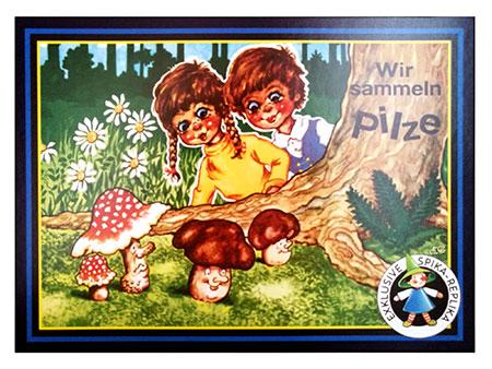 Wir sammeln Pilze (SPIKA)