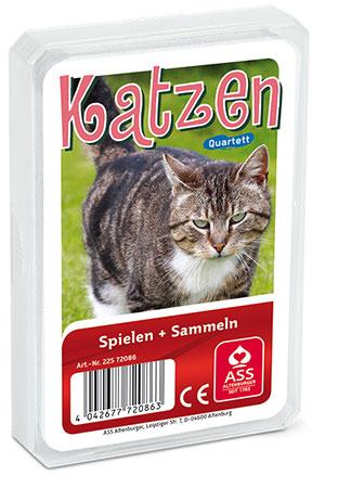 Tier-Quartett - Katzen