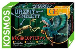Urzeit-Skelett Archaeopteryx (ExpK)