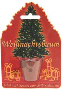 Weihnachtsbaum Spiele.Weihnachtsbaum Im Topf Spiel Weihnachtsbaum Im Topf Kaufen